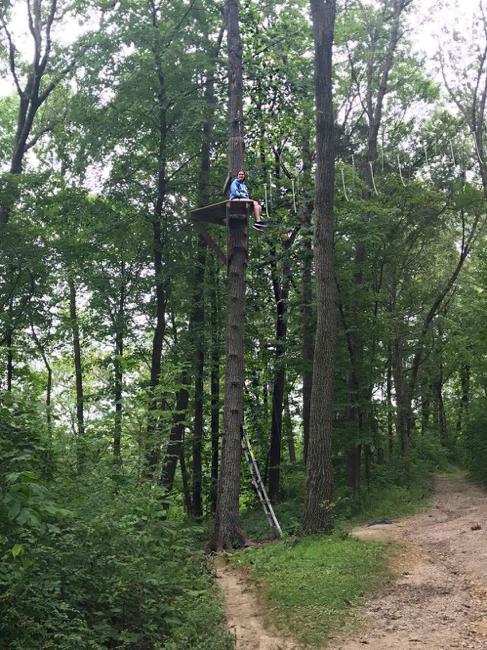climbing trees at Camp USA