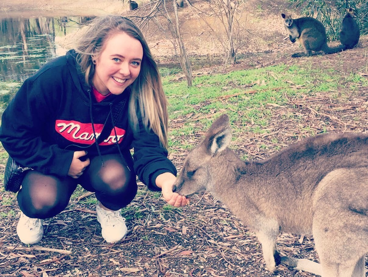 Feeding the Kangaroos in Australia